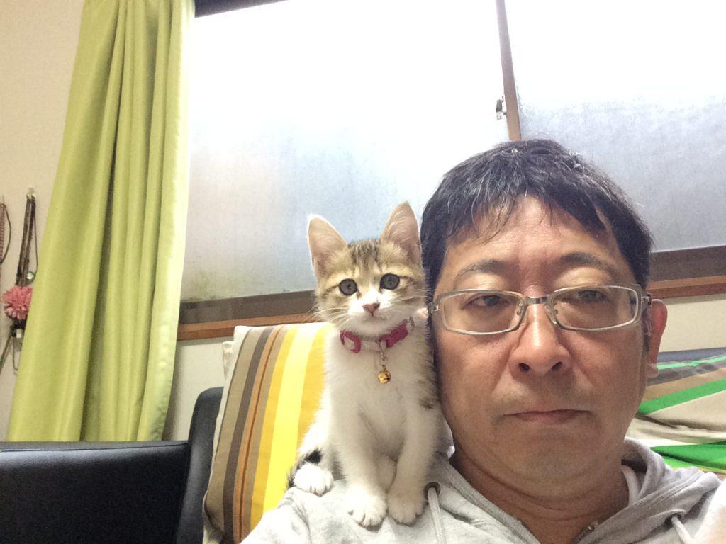 キジシロ猫 テトコ